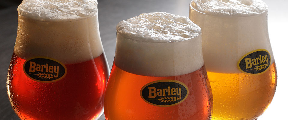 how to make beer from barley